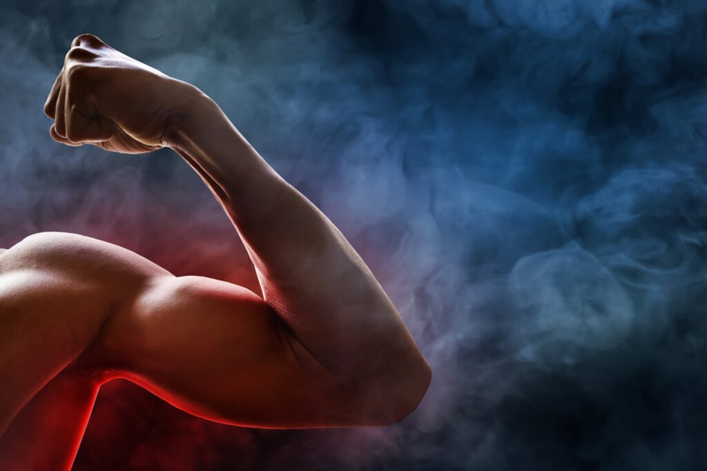 How To Safely Build Muscle